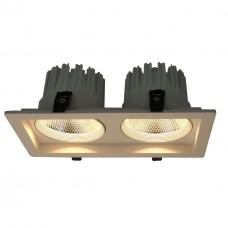 Встраиваемый светодиодный светильник Arte Lamp Privato A7018PL-2WH