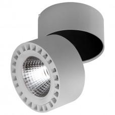 Потолочный светодиодный светильник Lightstar Forte 381393