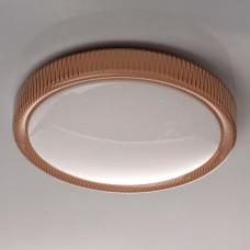 Потолочный светодиодный светильник MW-Light Ривз 5 674013801