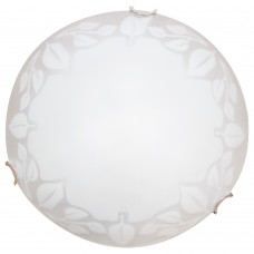 Настенный светильник Arte Lamp Leaves A4020PL-1CC